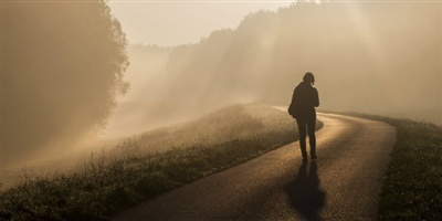 11350-fog-mist-walking-journey-path-400w-tn